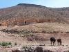 Tatiouine - Maroc